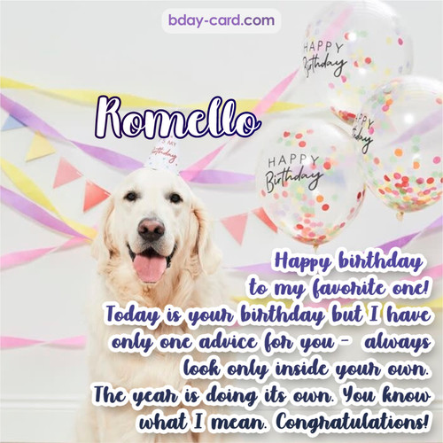 Happy Birthday pics for Romello with Dog