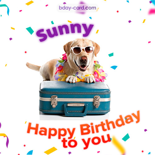 Funny Birthday pictures for Sunny