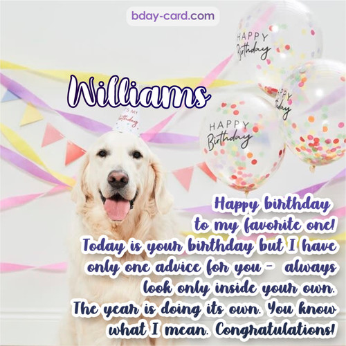 Happy Birthday pics for Williams with Dog