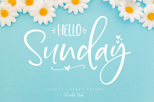 blue background with lettering and white daisies