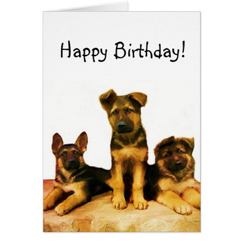 Happy birthday german shepherd puppies card zazzle co uk