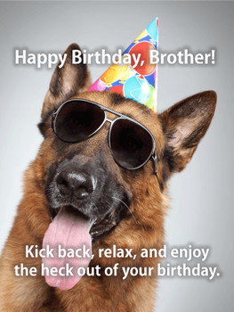 Dog happy birthday cards birthday amp greeting cards by d...