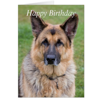Funny german birthday cards amp invitations zazzle co uk