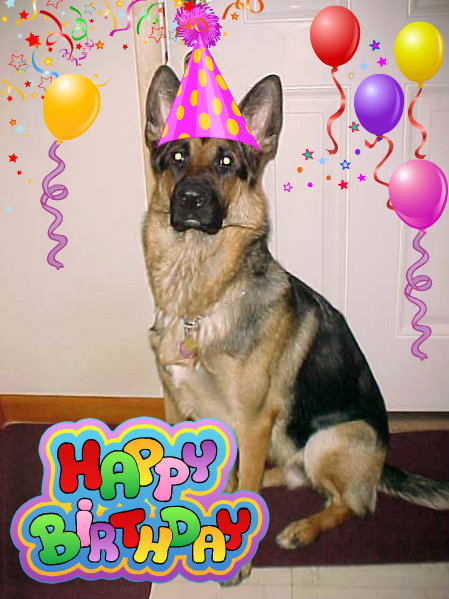 Happy Birthday Images With German Shepherd Free Happy Bday Pictures And Photos Bday Card Com