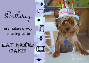 Birthday Cards Pets Printable Owner Dog In Real Size 600x600 462Kb