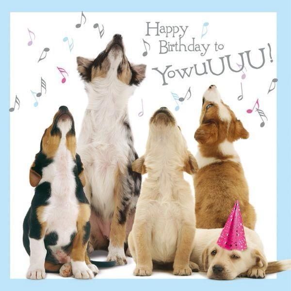 Birthday Card Dog Cards Pets Printable Owner