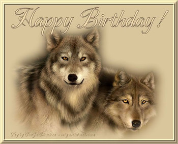 Happy birthday wolf wolf happy birthday photo wolves jpg ...