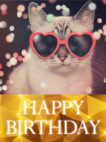Enjoyable Happy Birthday Images With Cats Free Bday Cards And Personalised Birthday Cards Epsylily Jamesorg