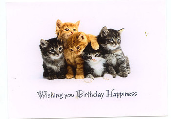 Kitten Greeting Cards Kittens Birthday Card Margess Blog