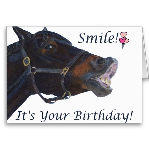 Happy Birthday Images With Horses Free Bday Cards And Pictures