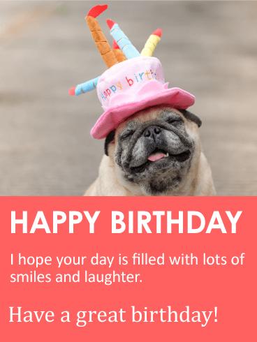 Animal Happy Birthday Cards Amp Greeting B
