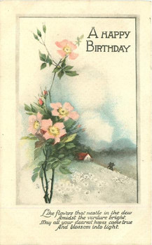 A happy birthday wild rose amp rural inset tuckdb postcards