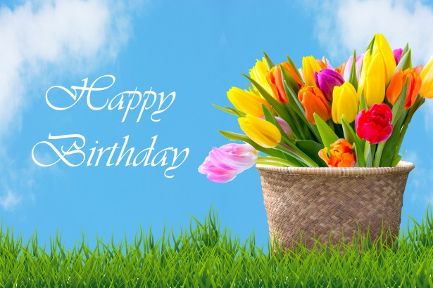 Tulips in basket birthday card free stock photo public do...
