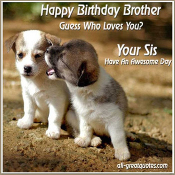 25 Best Happy Birthday Meme Images For Sister Sis Birthda Happy