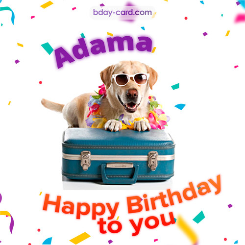Funny Birthday pictures for Adama