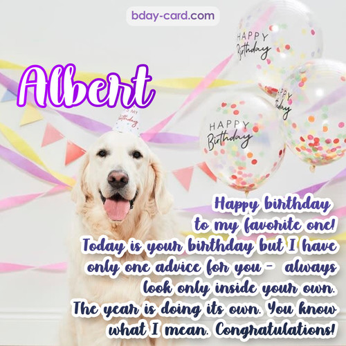 Happy Birthday pics for Albert with Dog