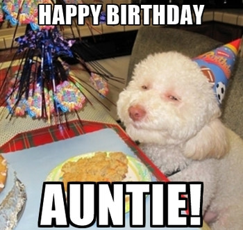 Funny Happy Birday Meme Images For Aunt Auntie Birday Hd Happy