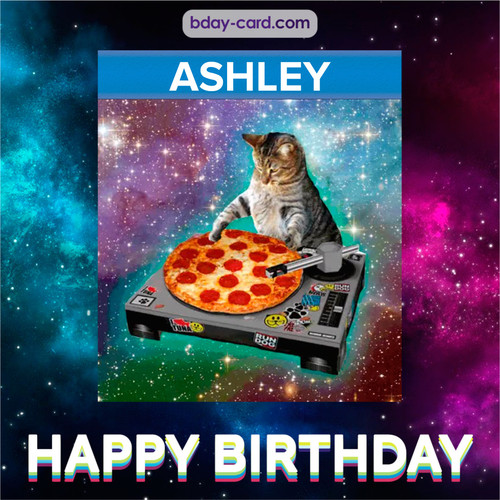 Meme with a cat for Ashley - Happy Birthday