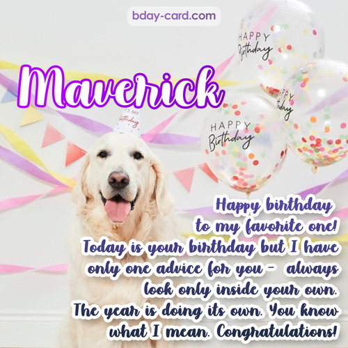 Happy Birthday pics for Maverick with Dog